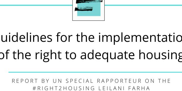 un-special-rapporteur-guidelines-2020