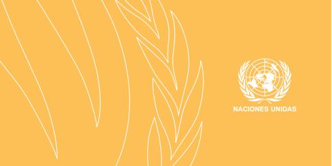 ONU-el-derecho-una-vivienda-adecuada
